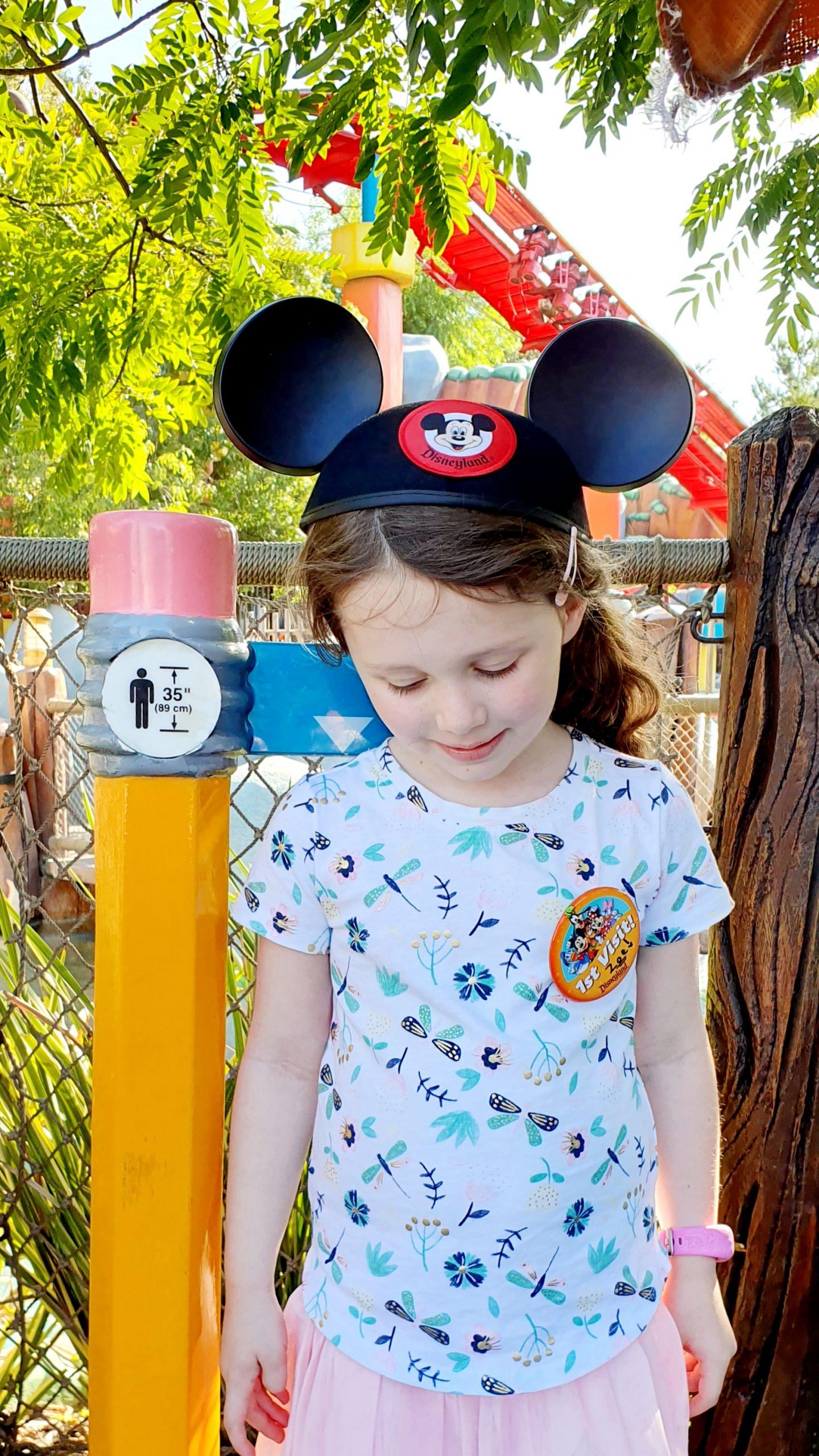 Disneyland Mickey's Toontown