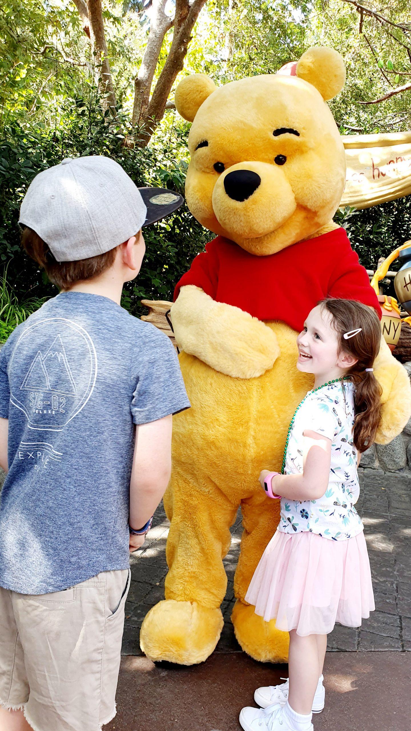 Disneyland Winnie the Pooh