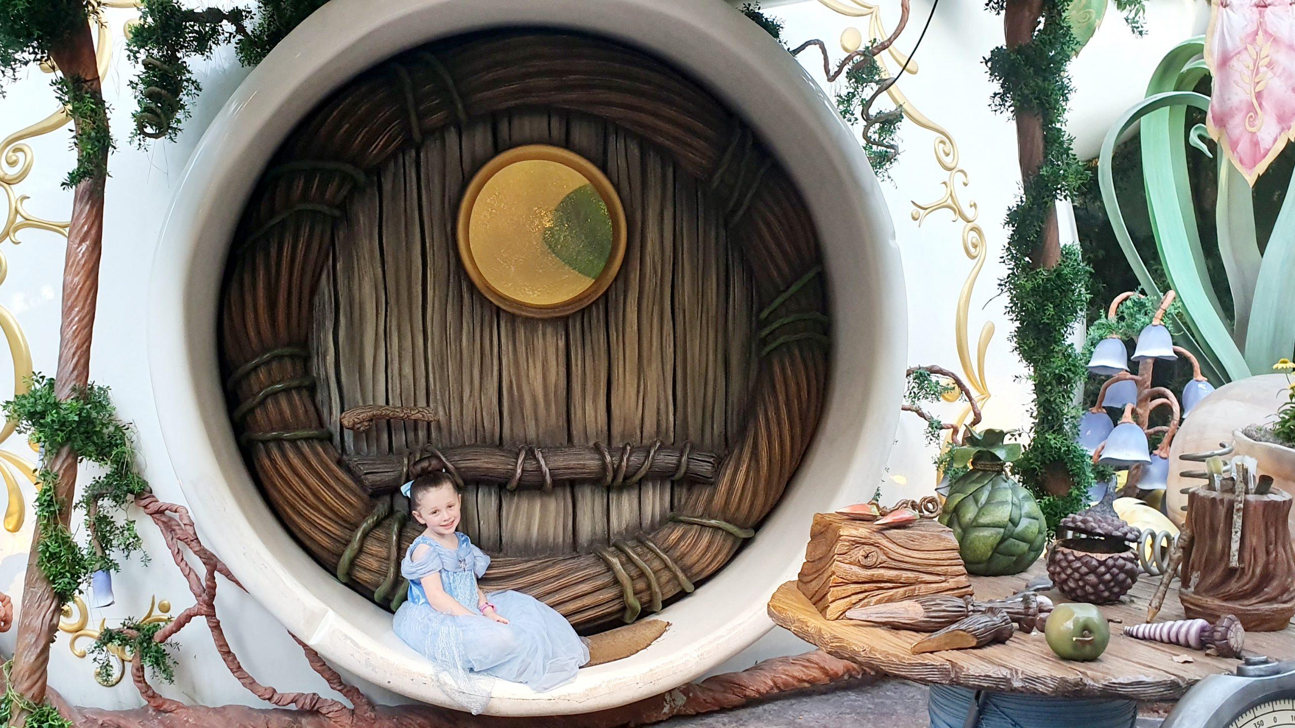 Disneyland Pixie Hollow