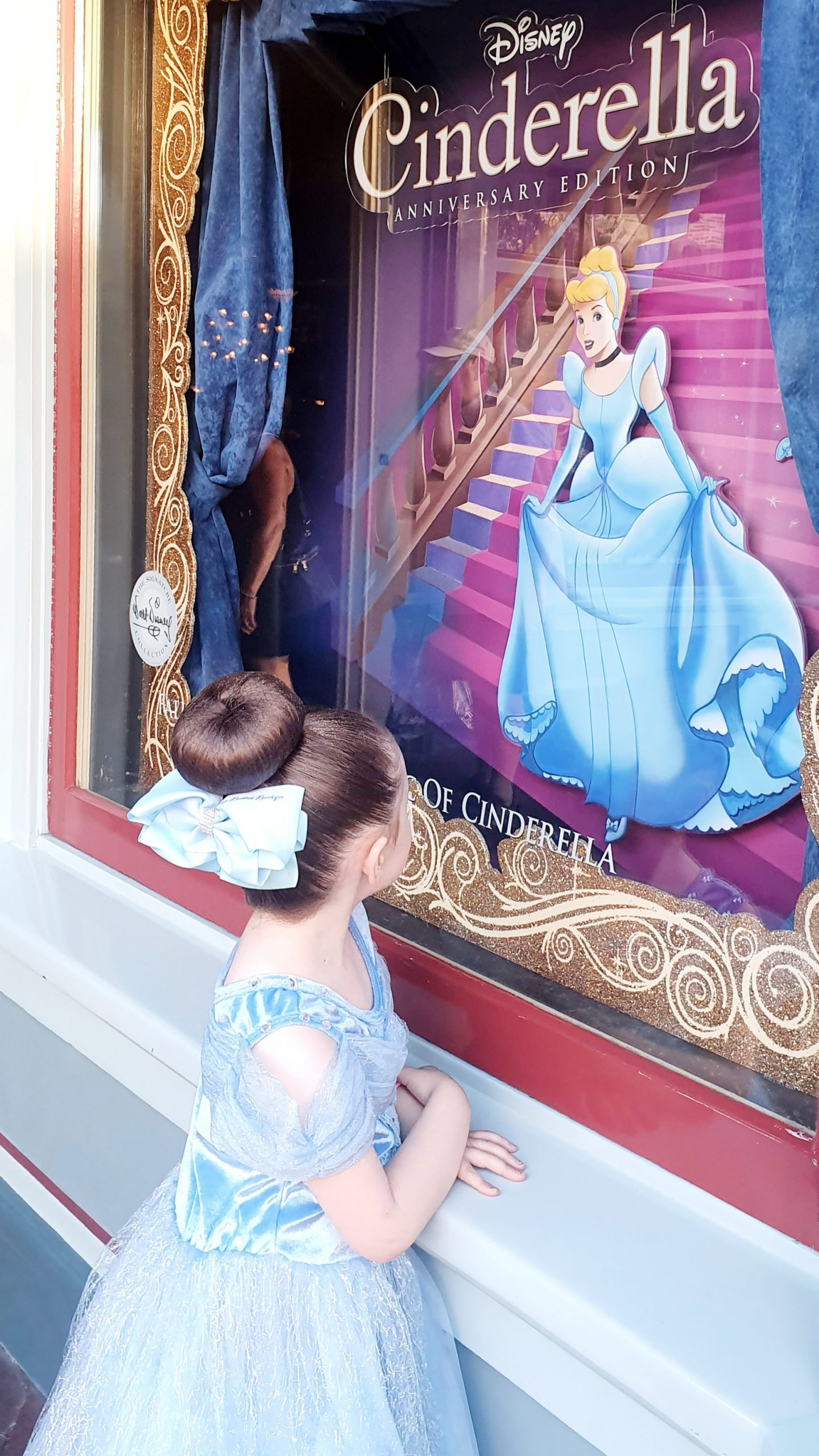 Disneyland Main Street U.S.A.